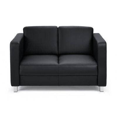 Echtleder 2-Sitzer